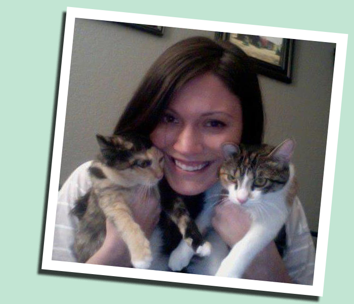 Lindsey and 2 foster cats