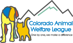 Colorado Animal Welfare League
